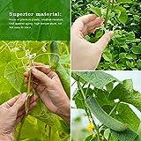 LEOBRO 200PCS Plant Support Clips, Garden Support