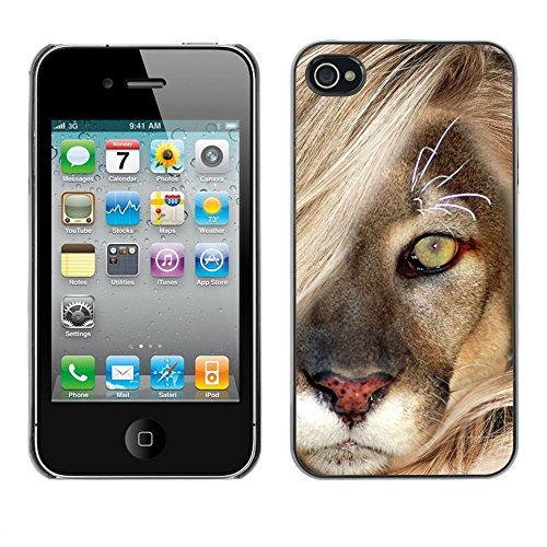 TaiTech / Case Cover Housse Coque étui - Mane Lion Cub Feline Big Cat Nature - Apple iPhone 4 / 4S