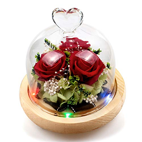 StillCool Enchanted Rose,Beauty and The Beast Rose Real Rose in Glass Dome,Multiple Lighting Modes,Multi Use for Home/Office or Home Decorations, Anniversary, Valentine's Day (Enchanted ()