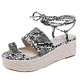 2019 Sharemen Casual Sandals Roman Shoes Straps Wedge Shoes Leopard Toe Thick Platform Women's Shoes(Black,US: 5)