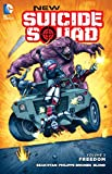 New Suicide Squad Vol. 3: Freedom