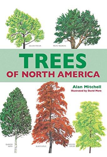 Download Trees of North America PDF