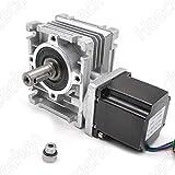 Worm Gear Nema23 Stepper Motor 3.5A L2.1inch