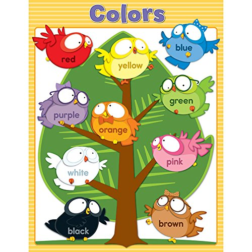 Carson Dellosa Owl Pals Colors Chart (114122)]()