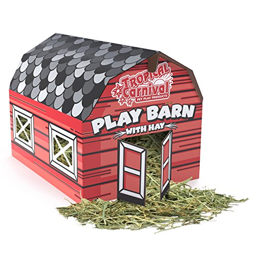 Tropical Carnival F.M. Brown's Play Barn with Timothy Hay for Rabbits, Guinea Pigs, Chinchillas, Hamsters, and Gerbils, 100% Edible, Made with Non-Toxic Vegetable Ink, 8oz ()