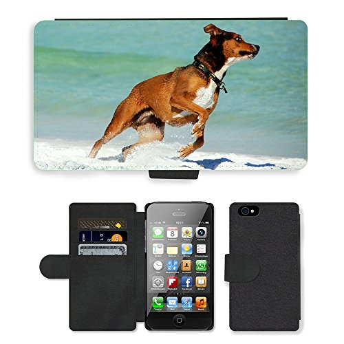 Just Phone Cases PU Leather Flip Custodia Protettiva Case Cover per // M00127773 Faune Chien plage Pet Canine // Apple iPhone 4 4S 4G