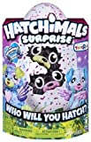 Hatchimals Surprise - Puppadee - Hatching Egg with Surprise Twin Interactive Hatchimal Creatures and Nest Accessory by Spin Master, Available Exclusively at Toy 'R' Us