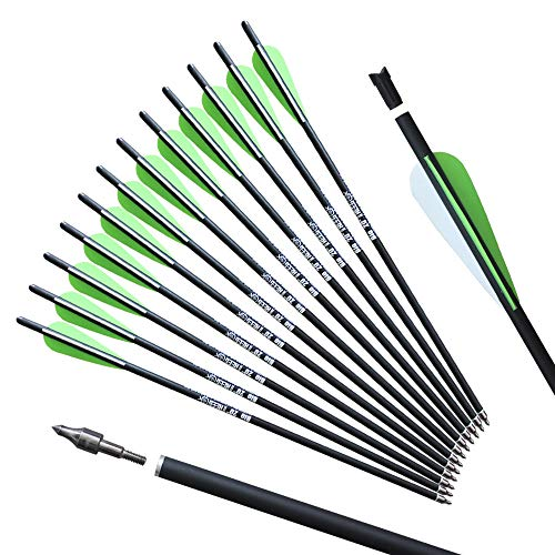 REEGOX 20 inch Crossbow Bolts Bio with 4-Inch Vanes(Pack of 12)