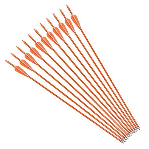 NIKA ARCHERY Fiberglass Arrows Youth Kids Practise Recurve Bows Compound Bow Shooting 12 pcs 24 inch ()