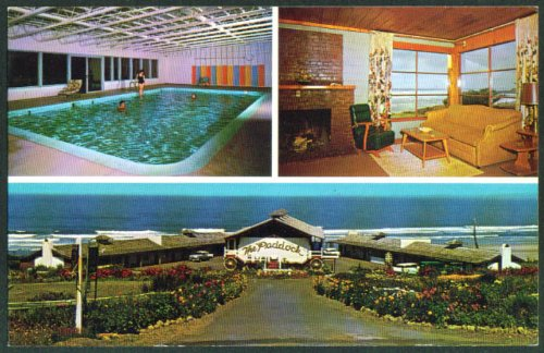 Pool Fireplace Paddock Motel Yachats OR postcard 1950s, used for sale  Delivered anywhere in USA