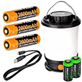 Fenix CL30R 650 lumen USB rechargeable camping lantern / work light (Black body) , 3 X 18650 rechargeable batteries with Two back-up use EdisonBright CR123A Lithium Batteries