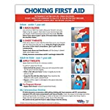 Choking First Aid Poster - 17 x 22 in. - Laminated - Instructions for Infants, Children, and Adults