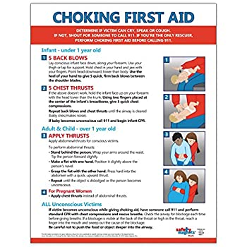 photo regarding Printable Pocket First Aid Guide identify : Choking To start with Help Poster - 12 x 18 within just