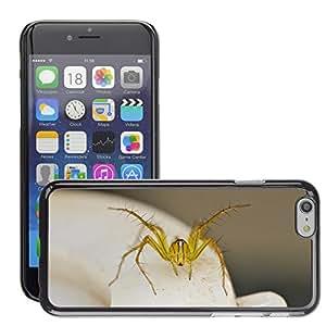"Just Phone Cases Etui Housse Coque de Protection Cover Rigide pour // M00129183 Araña Animal Arácnido Vida Silvestre // Apple iPhone 6 4.7"""