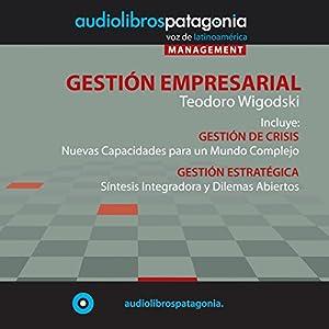 Gestión Empresarial [Business Management] Audiobook