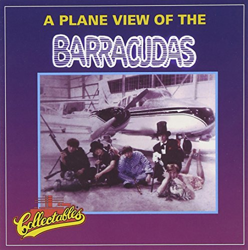 plane-view-of-the-barracudas