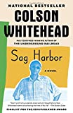 img - for Sag Harbor book / textbook / text book