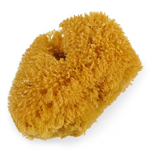 UPC 771590119006, Urban Spa Full Body Sea Sponge For Shower, Bath, Exfoliating and Cleansing