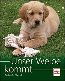 2 Bücher Ein Welpe kommt ins Haus Golden Retriever