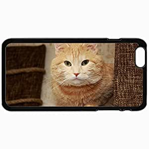 Fashion Unique Design Protective Cellphone Back Cover Case For iPhone 6 Case Cat Face Thick Look Black