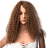 Silike Afro Kinky Curly Wig Kanenkalon Fiber Jerry Curl Wigs For Black Women African American Female Wig Heat Resistant Fiber (Long, 27)