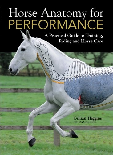 horse anatomy coloring book - 8