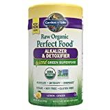 Garden of Life Vegan Green Superfood Powder - Raw Organic...