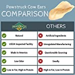 Pawstruck Jumbo Cow Ears for Dogs | Made in USA & Natural | Healthy Bulk Dental Dog Treats | Single Ingredient Chew | Fresh,Tasty Beef | Low Calorie, Digestible, Safe 11