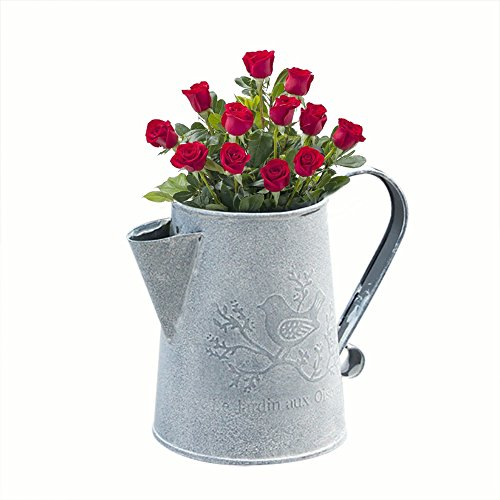 Tin Gardening Watering Can, Tinplate Retro Watering Can Kettle Garden Flower Pot Plant Planter Galvanized Watering Cans for Gardening or Floral Arrangements (Short)