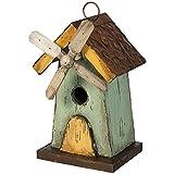 Carson Home Accents Windmill Birdhouse