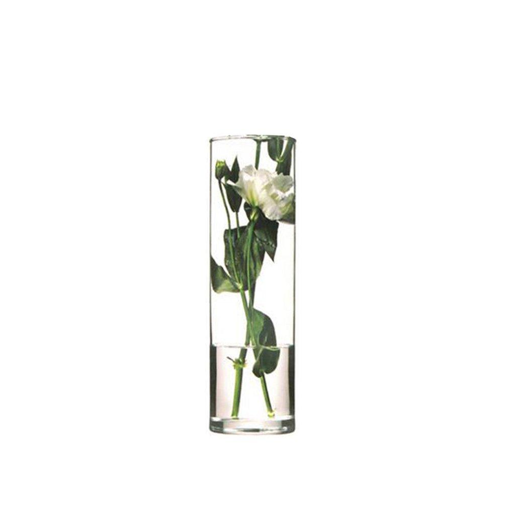 GAOLILI シンプルで透明なガラスの花瓶豊富な竹のユリの花水の栽培の花瓶居間乾燥花の花瓶 ( サイズ さいず : C ) B07BMZ6GK3 C C