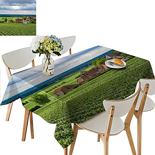UHOO2018 Square/Rectangle Indoor and Outdoor Tablecloth Grape Manor Restaurant Party,54 x102inch