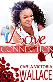Love Connection (Peace In The Storm Publishing Presents)