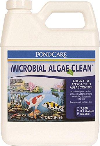 api-pondcare-microbial-algae-clean-32-ounce