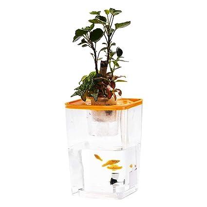 Leking El Acuario de acrílico ecológico, Acuario de jardín de Agua de Escritorio, simbiótico