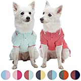 Blueberry Pet Pack of 2 Back to Basic Cotton Blend Summer Dog Polo Shirts in Mint Blue and Terra Cotta Red, Back Length 16'', Clothes for Dogs