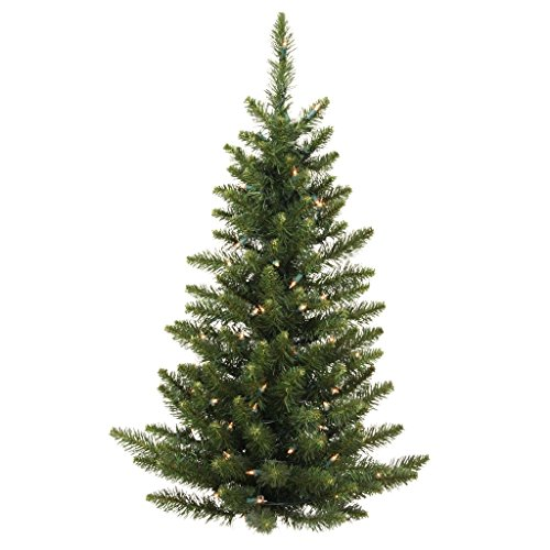 Vickerman 5' Unlit Camdon Fir Wall Tree Camdon Tree