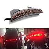 Motorcycle LED Rear Brake License Plate Tail Light Stop Running Lamp for Harley Davidson Cruiser(Smoke Lens)