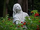 Lourdes: I Am the Immaculate Conception