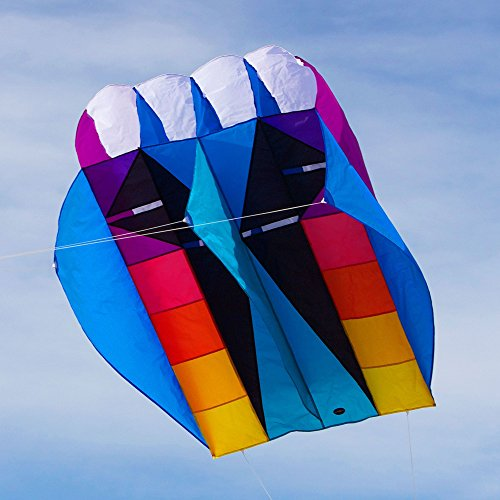 Into The Wind UltraFoil 15 Kite by Into The Wind