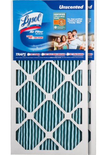 "Lysol 10001-202-0007 Triple Protection Furnace/AC Air Filter, 12"" x 24"" x 1"", (2-Pack)"