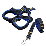 Xiloyis Step-in Puppy Leash Harness - Jean Pet Traction Rope or Lead - Dog Chock Chain, Pull Adjustable & Heavy Duty Dog Walking Training for Medium and Large-sized Breed