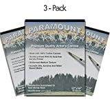 Paramount Artist Double Primed 100% Cotton Canvas Pad - 3 Pack (30 Canvas Sheets) - 12'' x 16''