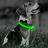 Illumifun LED Dog Collar, TPU Cuttable USB Rechargeable Light Up Collars, 360 Degree Glowing Pet Collar Make Your Dogs Seen & Safe at Night(Neon Green)