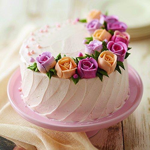 Wilton Decorator Preferred Buttercream Cake Decorating Set ...