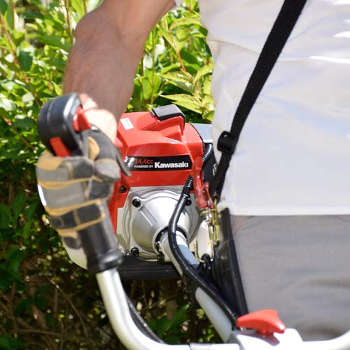Korman Garden Desbrozadora Gasolina 34, 4 CC(Ref:600303 ...