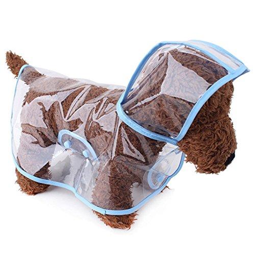 cat raincoats
