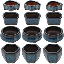 Happy Bonsai 12 Mini Glazed Pots / Small Succulent Plant Flower Planters