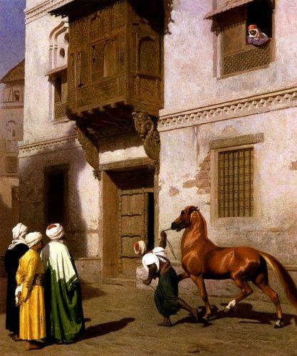 Arabian Horses Images - 2