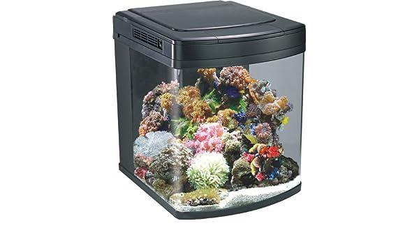 Acuario Nano Cube Marino Pez Depósito 128 litros HS-60 - - halogenuros iluminación: Amazon.es: Productos para mascotas